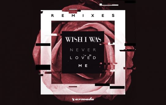 Wish I Was - Never Loved Me